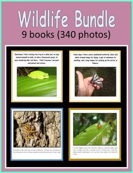 Back to School Wildlife BUNDLE (9 ebooks)