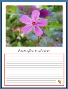 Back to School - Wildlife Writing Prompts