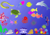 ocean creatures wall poster