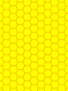 Background Paper – Honeycomb Bundle