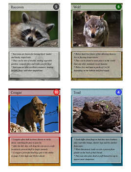 Backyard Animals Trading Cards, Bingo/Slideshow and Puzzle Combo
