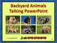 Backyard Animals Talking PowerPoint & Four Puzzle Pack