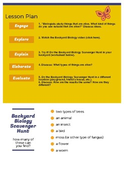 Backyard Biology Lesson Plan and Scavenger Hunt (great summer activity!)