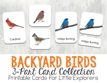 Backyard Birds 3-Part Montessori-Inspired Card Set