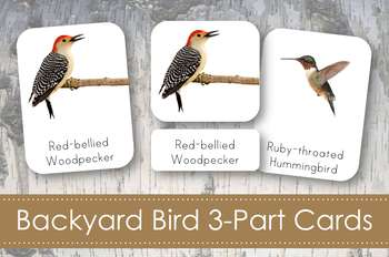 Backyard Birds 3-Part Nomenclature Cards- Montessori