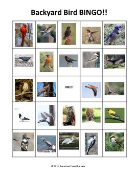 Backyard Birds BINGO