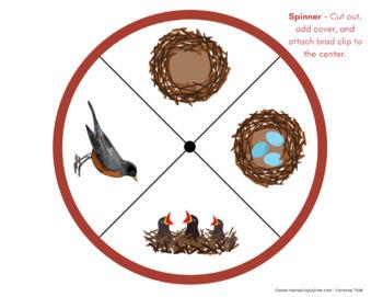 Backyard Birds Life-Cycle & 3-Part Cards