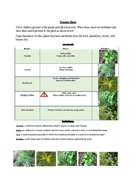 Backyard Herbal Medicine Worksheet