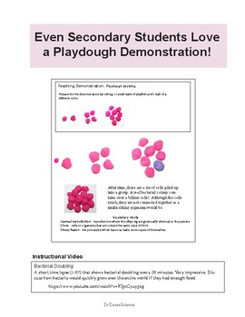 Bacterial Reproduction and Cloning