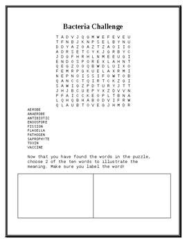 Bacteria Challenge Worksheet