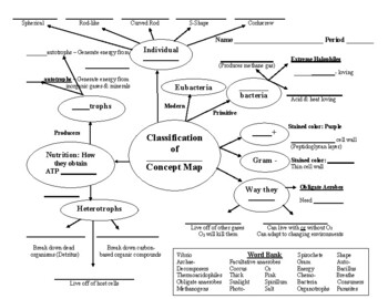 Concept Map Bacteria.Bacteria Classification Concept Map For The Life Sciences Tpt