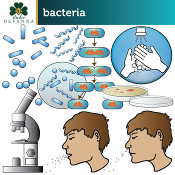 Bacteria Clip Art