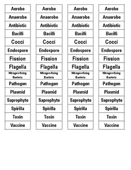 Bacteria Cut-n-Paste Vocabulary