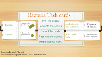 Bacteria Mix N' Match Cards