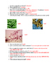 Bacteria Open Notes Worksheet with KEY