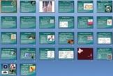 Bacteria Viruses Smartboard Notebook Presentation Lesson Plan