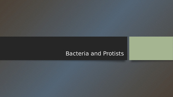 Bacteria and Protists
