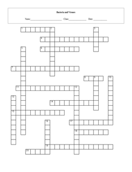 bacteria and viruses crossword puzzle with key by maura derrick neill. Black Bedroom Furniture Sets. Home Design Ideas