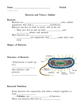 Bacteria and Viruses Notes Outline Lesson Plan