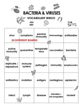 Bacteria and Viruses Vocabulary Bingo