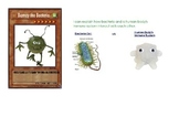 Bacteria vs Human Body's Immune System Lesson Plan