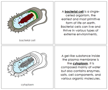 Bacterial Cell Nomenclature Book