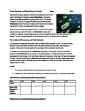 Bacterial Enzyme Function and Protein Synthesis