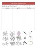Bacterial Shape Classification