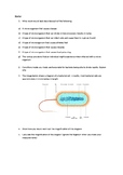 Bacterial cells starter activity