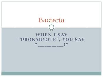 Bacteria PPTx