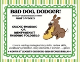 Bad Dog Dodger! Scott Foresman Reading Street foldable 2nd Grade