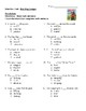 Bad Dog Dodger Selection Test, Vocabulary Match Reading Street Series