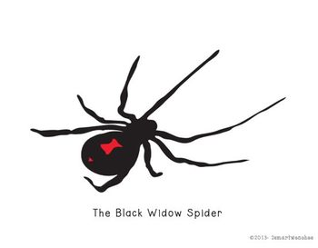 Baddest of the Spider World-The Brown Recluse Spider and The Black Widow Spider