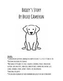 Bailey's Story novel packet - spelling, vocabulary, homewo