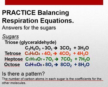 Balancing Cellular Respiration Equations