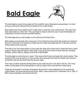Bald Eagle Article and Coloring Worksheet
