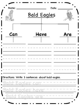Bald Eagles Tree Map