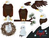 Bald Eagle Clip Art Set