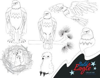 Bald Eagle Clip Art Set
