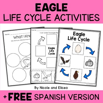 Vocabulary Activity - Bald Eagle Life Cycle