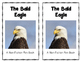Bald Eagle Mini Book