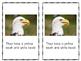 Bald Eagle Mini Book