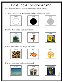 Bald Eagle NonFiction Packet for Autism and Special Education