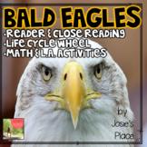 Bald Eagles- Reader, Close Reading, Life Cycle Wheel, Math Activities & More!