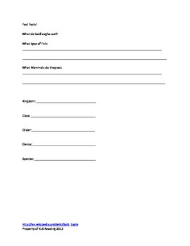 Bald Eagle - Review Article - Information Facts Questions Vocab Activities