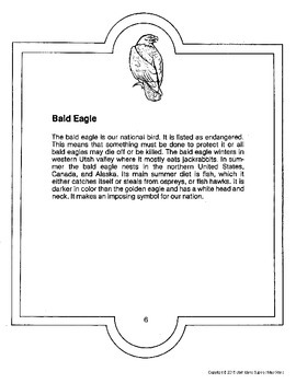 Bald Eagle Sample