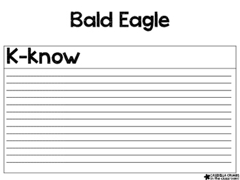bald eagle writing template kwl chart graphic organizer by