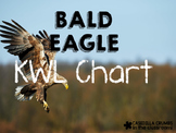 Bald Eagle Writing Template KWL Chart  Graphic Organizer