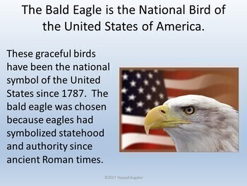 Bald Eagles PowerPoint - Fun Facts