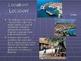 Balkan Nations Power Point Presentation